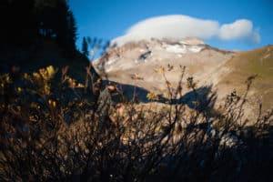 summit, mountain, camping